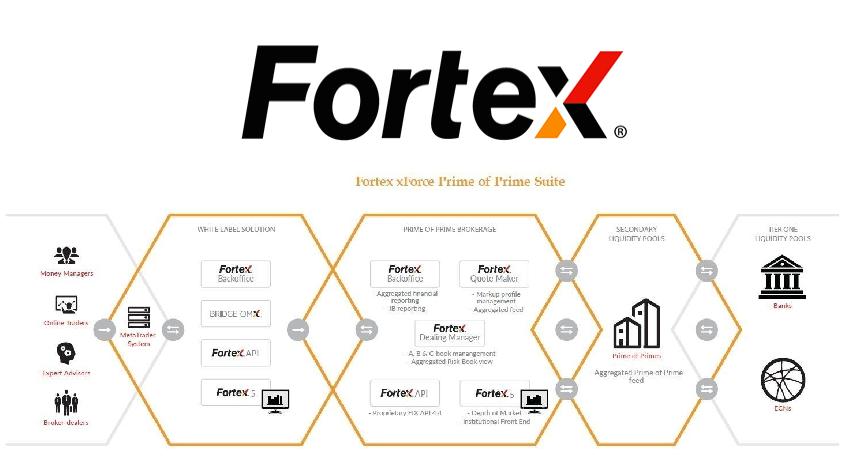 Fortex xForce Prime of Prime Suite