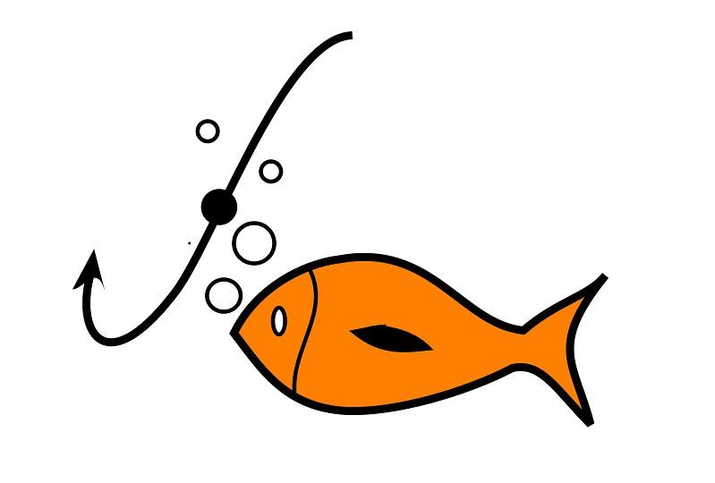 Fish binary options preakness online betting